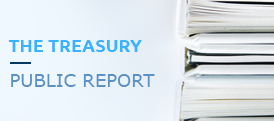 The treasury public report