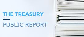 The treasury public report